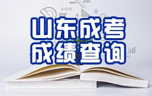 山东省2019年成人高考成绩已公布 查