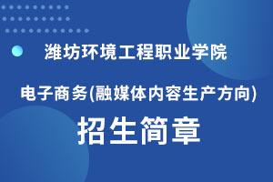 潍坊环境工程学院电子商务专业2020